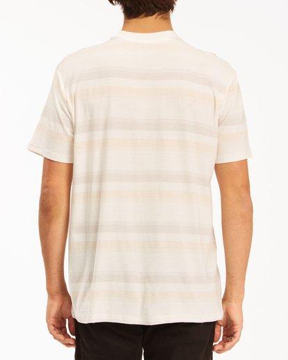 2 Die Cut Crew Neck T-Shirt White ABYKT00118 Billabong