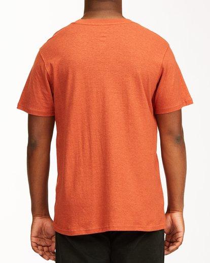 2 A/Div Arch Hemp Short Sleeve T-Shirt Red ABYKT00129 Billabong