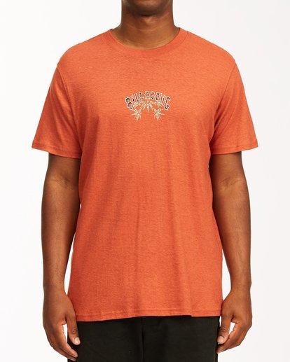 0 A/Div Arch Hemp Short Sleeve T-Shirt Red ABYKT00129 Billabong
