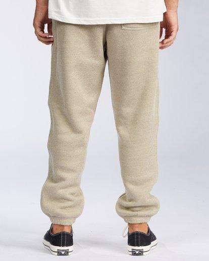 2 Hudson Fleece Pant Beige ABYNP00101 Billabong