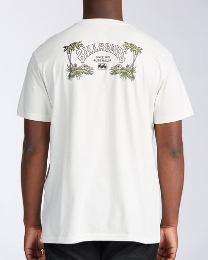 2 Arch Short Sleeve T-Shirt White ABYZT00111 Billabong