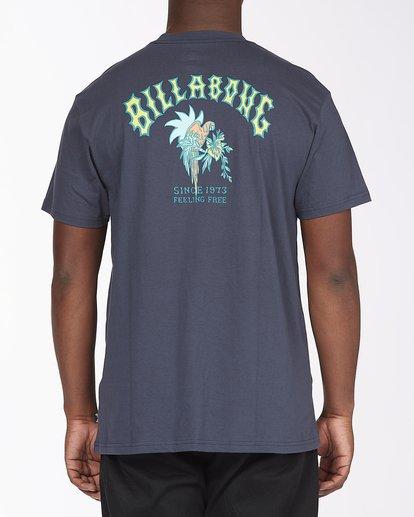 2 Arch Short Sleeve T-Shirt Blue ABYZT00111 Billabong