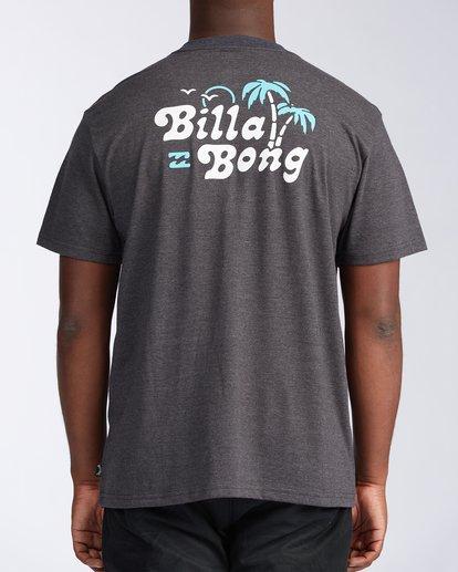 2 Tanzania Short Sleeve T-Shirt Black ABYZT00114 Billabong