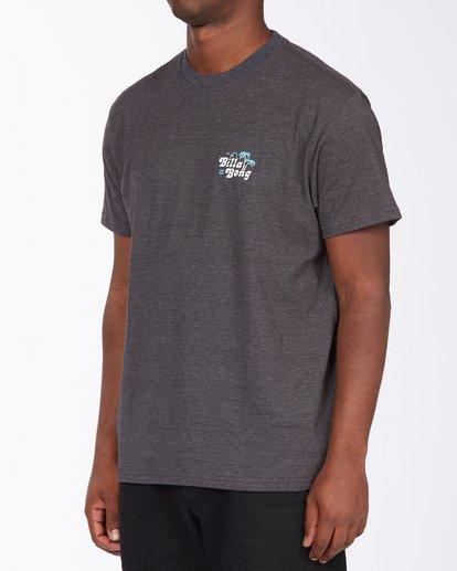 4 Tanzania Short Sleeve T-Shirt Black ABYZT00114 Billabong