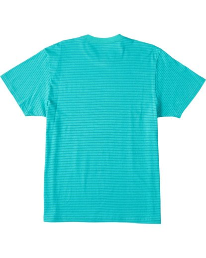 1 Native Stripe Short Sleeve T-Shirt Grey ABYZT00119 Billabong