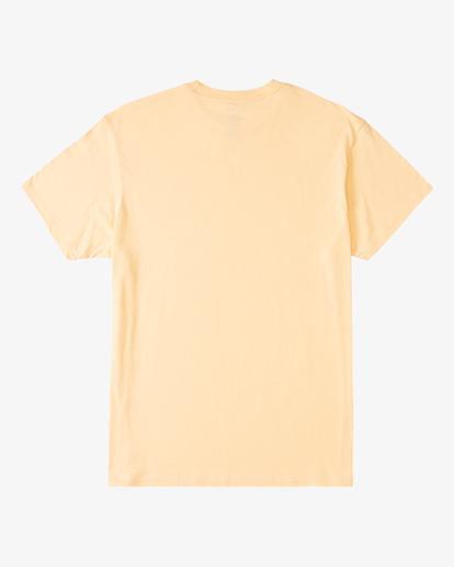 5 Stacked Short Sleeve T-Shirt Black ABYZT00234 Billabong