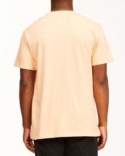 2 Stacked Short Sleeve T-Shirt Black ABYZT00234 Billabong