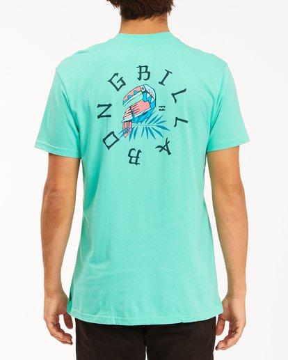 2 Geo Toucan Short Sleeve T-Shirt Black ABYZT00240 Billabong