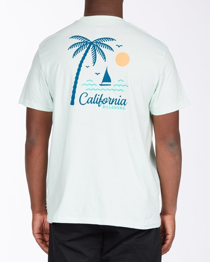 2 Daysailor California Short Sleeve T-Shirt Multicolor ABYZT00350 Billabong