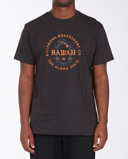 0 Seal Hawaii Short Sleeve T-Shirt Black ABYZT00353 Billabong