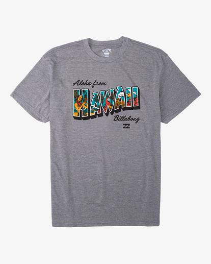 4 Greetings Hawaii Short Sleeve T-Shirt Green ABYZT00356 Billabong