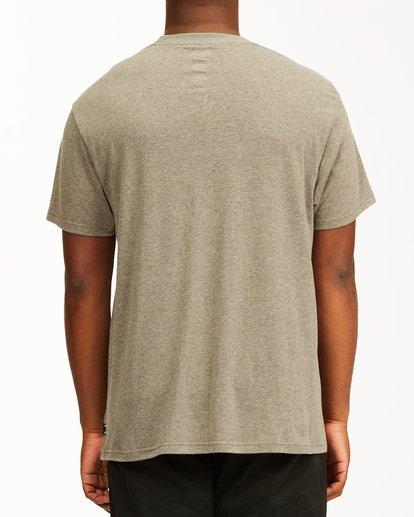2 Greetings Hawaii Short Sleeve T-Shirt Green ABYZT00356 Billabong