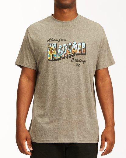 0 Greetings Hawaii Short Sleeve T-Shirt Green ABYZT00356 Billabong