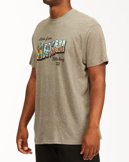 1 Greetings Hawaii Short Sleeve T-Shirt Green ABYZT00356 Billabong