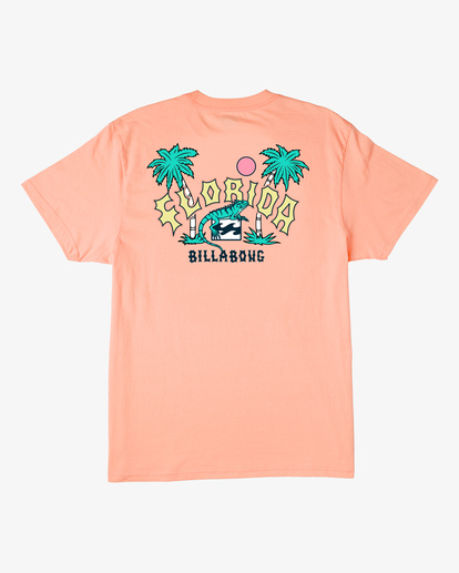 6 Arch Florida Short Sleeve T-Shirt Black ABYZT00360 Billabong