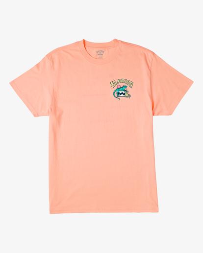 5 Arch Florida Short Sleeve T-Shirt Black ABYZT00360 Billabong