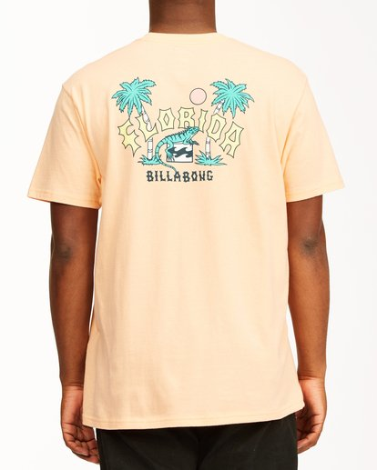 2 Arch Florida Short Sleeve T-Shirt Black ABYZT00360 Billabong