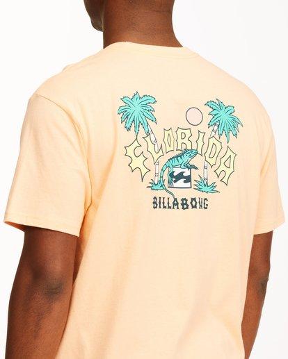 3 Arch Florida Short Sleeve T-Shirt Black ABYZT00360 Billabong