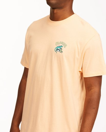 4 Arch Florida Short Sleeve T-Shirt Black ABYZT00360 Billabong