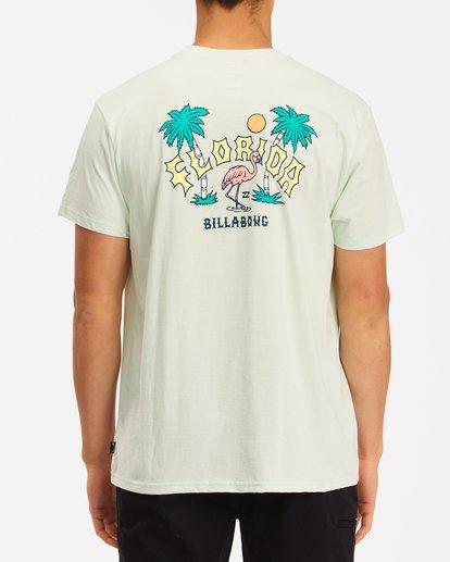 2 Arch Florida Short Sleeve T-Shirt Multicolor ABYZT00360 Billabong