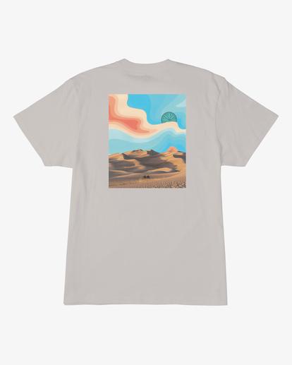 6 Desert Trip Short Sleeve T-Shirt Red ABYZT00406 Billabong