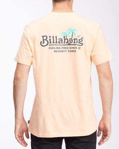 2 Lounge Short Sleeve T-Shirt Black ABYZT00609 Billabong