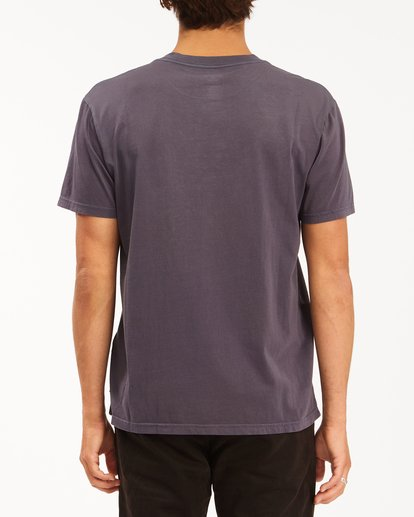 2 Essential Pocket Wave Washed T-Shirt White ABYZT00656 Billabong