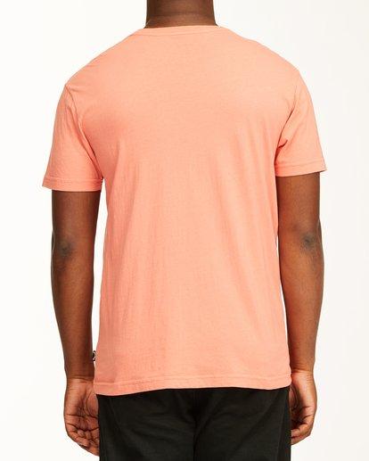 2 Inverse Photo Short Sleeve T-Shirt Orange ABYZT00657 Billabong