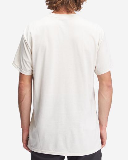 2 A/Div Performance UV Short Sleeve T-Shirt Brown ABYZT00676 Billabong
