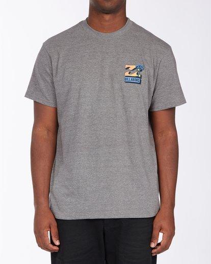 0 BBTV T-Shirt Green ABYZT00708 Billabong
