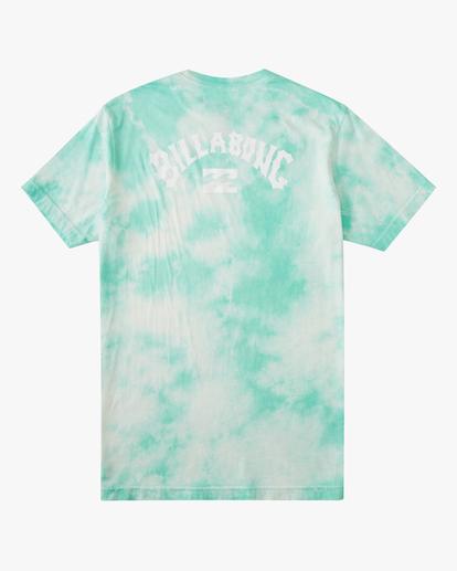 6 Tie Dye Arch Short Sleeve Tee Green ABYZT00760 Billabong