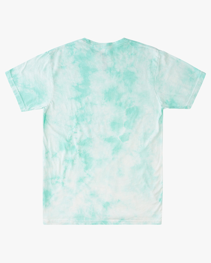 5 Tie Dye Rotor Arch Short Sleeve Tee Green ABYZT00761 Billabong