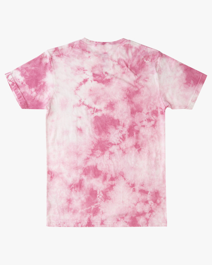 5 Tie Dye Rotor Arch Short Sleeve Tee Pink ABYZT00761 Billabong