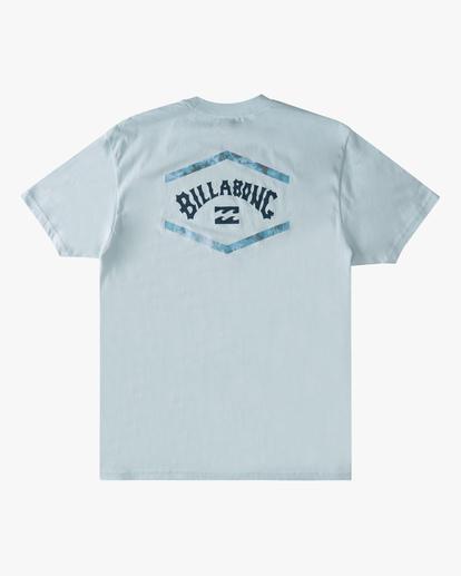 6 Entry Arch Short Sleeve T-Shirt Blue ABYZT00793 Billabong