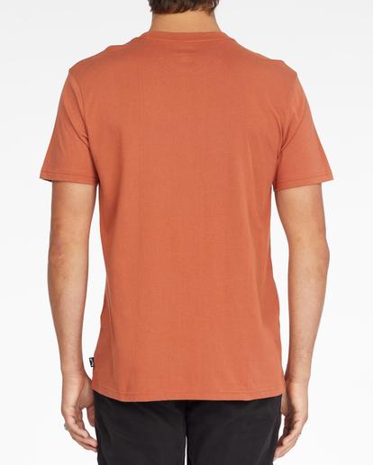 2 Woodland Short Sleeve T-Shirt Brown ABYZT00842 Billabong