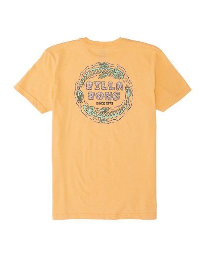 1 Boys' Stinker Short Sleeve T-Shirt Grey B4041BST Billabong