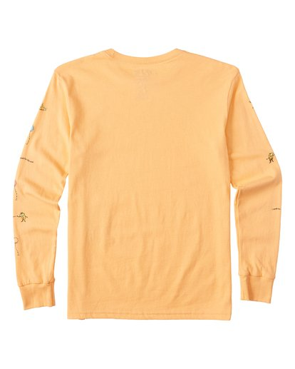 1 Boys' Lorax Long Sleeve T-Shirt Grey B4362BLO Billabong