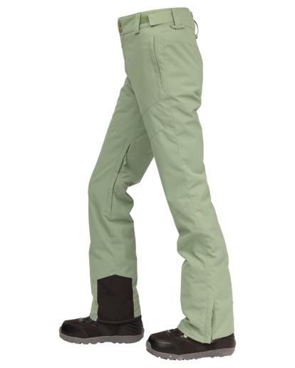 2 Malla Snow Pants Green EBJTP00103 Billabong