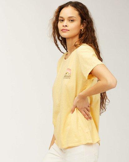 1 Whistler Love Of Root T-Shirt Grey J4673LWH Billabong