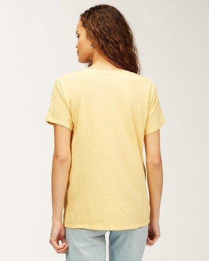 2 Florida Sunset Palms T-Shirt Grey J4673SFL Billabong