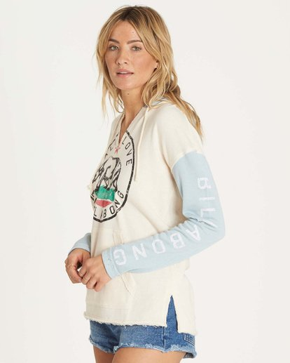 1 Days Off Pullover Hoodie  J601NBDA Billabong
