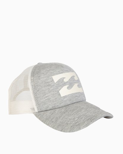 2 Billabong Trucker Hat Grey JAHTDBIL Billabong