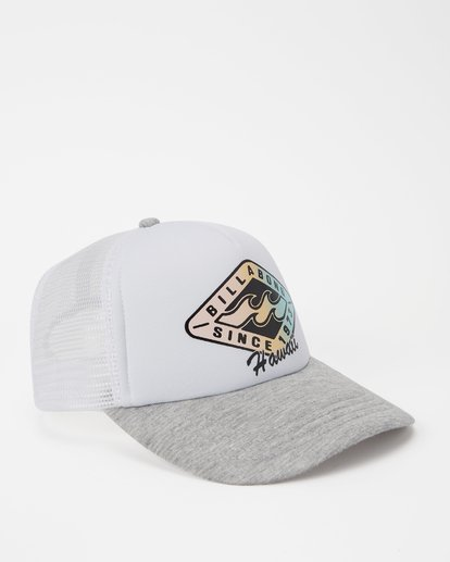2 Hawaii Palm Billa Trucker Hat Grey JAHWNBAR Billabong