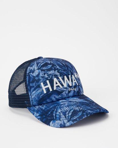 2 Hawaii Blue Palm Trucker Hat Grey JAHWNBBR Billabong