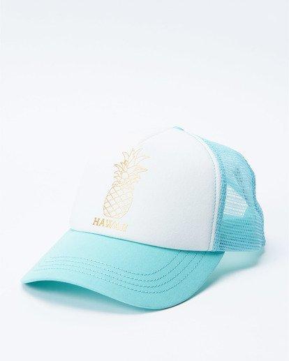 0 Hawaii Pina Trucker Hat  JAHWNBIR Billabong