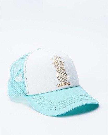 2 Hawaii Pina Trucker Hat  JAHWNBIR Billabong