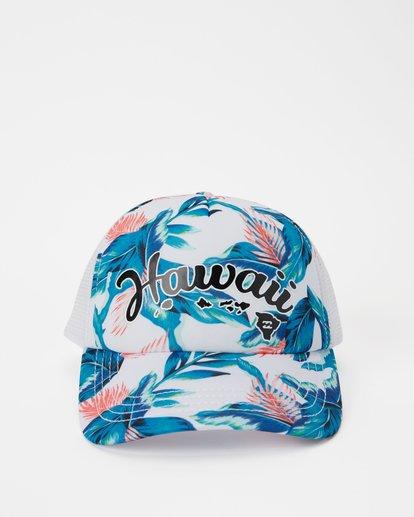 1 Hawaii Tropic Palm Trucker Hat Grey JAHWNBTR Billabong