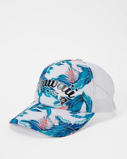 0 Hawaii Tropic Palm Trucker Hat Grey JAHWNBTR Billabong