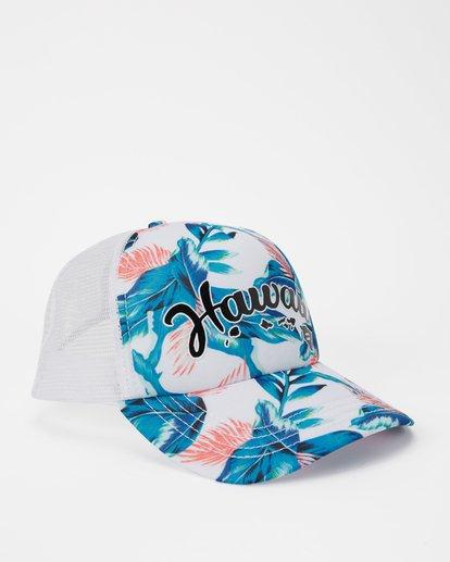 2 Hawaii Tropic Palm Trucker Hat Grey JAHWNBTR Billabong