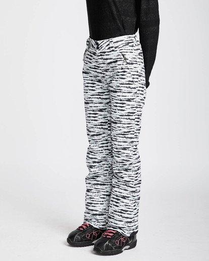 4 Malla 10K Snow Pants Negro L6PF01BIF8 Billabong